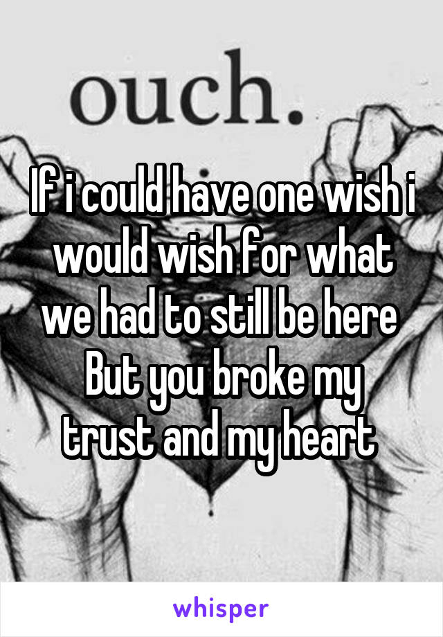 If i could have one wish i would wish for what we had to still be here  But you broke my trust and my heart