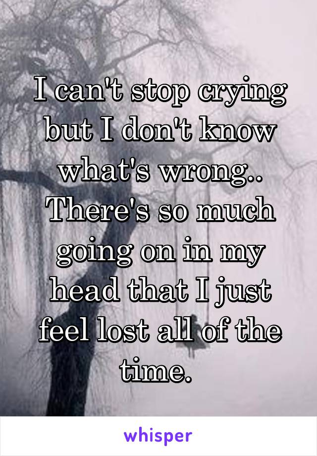 I can't stop crying but I don't know what's wrong.. There's so much going on in my head that I just feel lost all of the time.