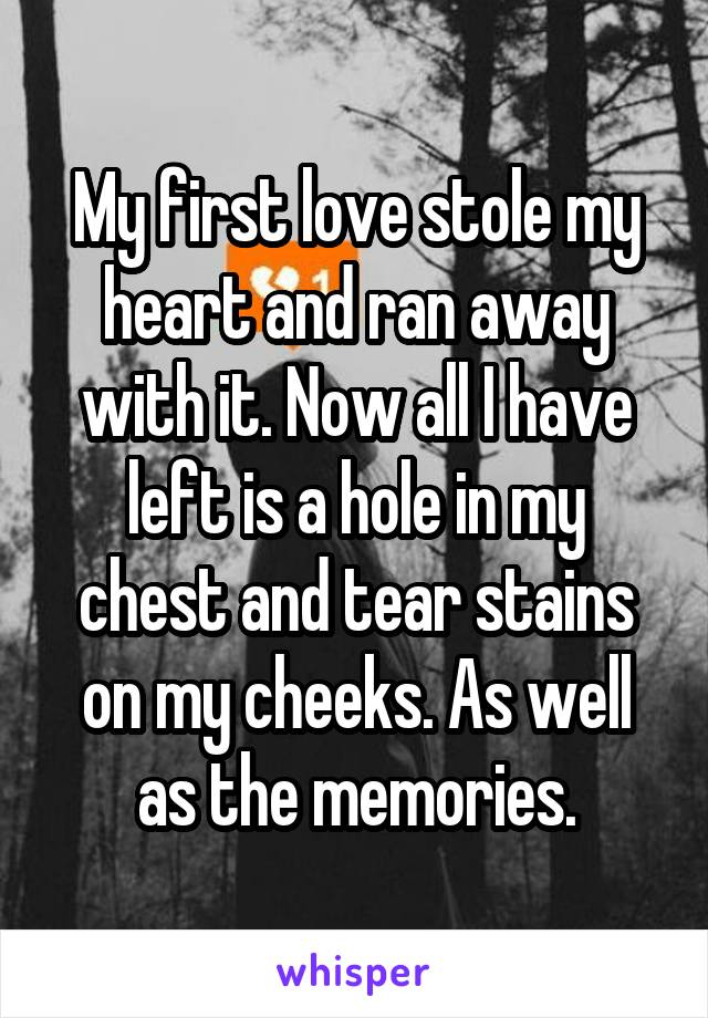 My first love stole my heart and ran away with it. Now all I have left is a hole in my chest and tear stains on my cheeks. As well as the memories.