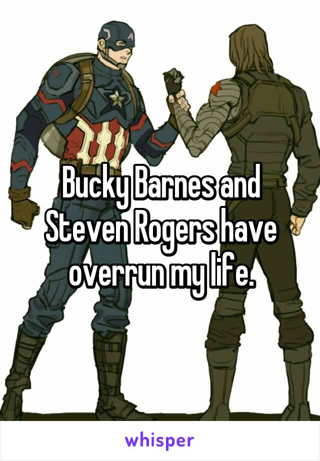 Bucky Barnes and Steven Rogers have overrun my life.