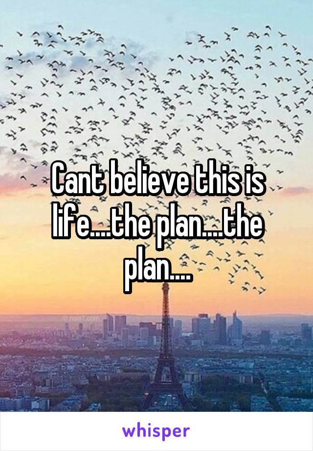 Cant believe this is life....the plan....the plan....