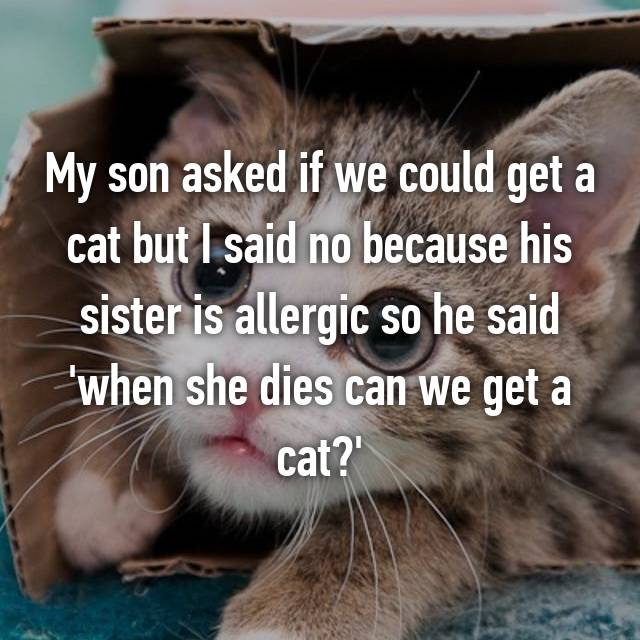 My son asked if we could get a cat but I said no because his sister is allergic so he said 'when she dies can we get a cat?'