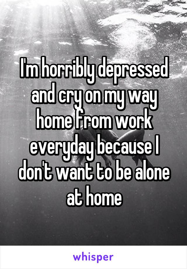 I'm horribly depressed and cry on my way home from work everyday because I don't want to be alone at home