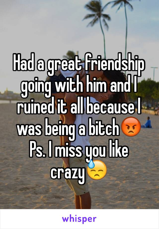 Had a great friendship going with him and I ruined it all because I was being a bitch😡  Ps. I miss you like crazy😓