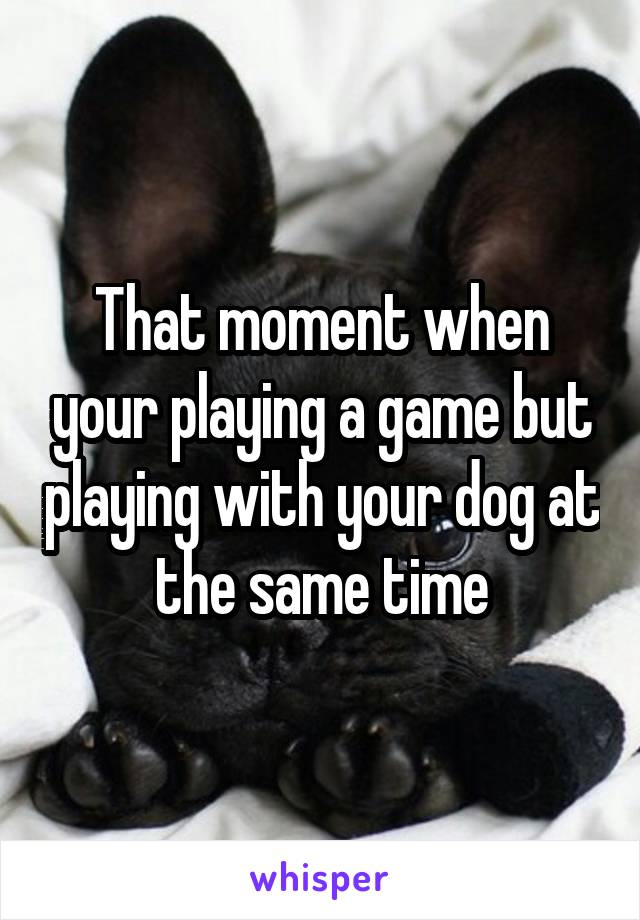 That moment when your playing a game but playing with your dog at the same time