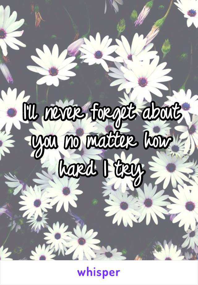 I'll never forget about you no matter how hard I try