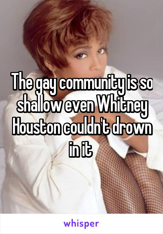 The gay community is so shallow even Whitney Houston couldn't drown in it