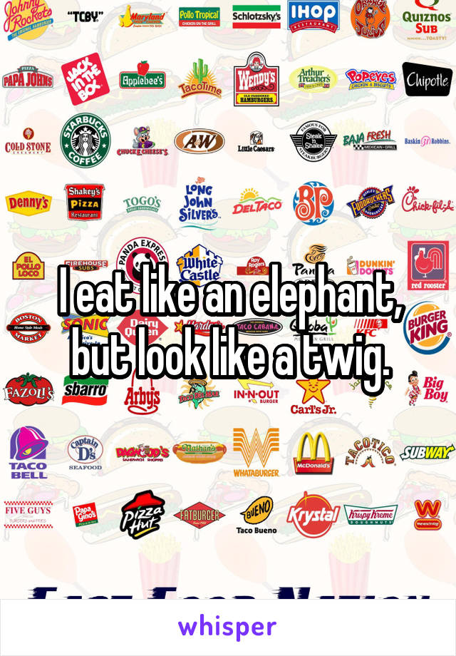 I eat like an elephant, but look like a twig.