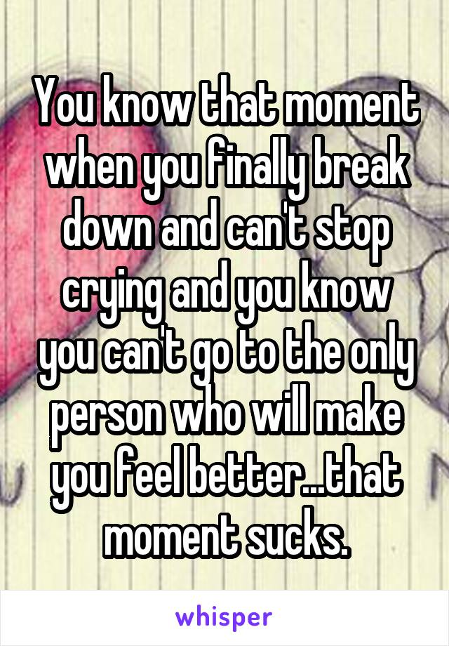 You know that moment when you finally break down and can't stop crying and you know you can't go to the only person who will make you feel better...that moment sucks.