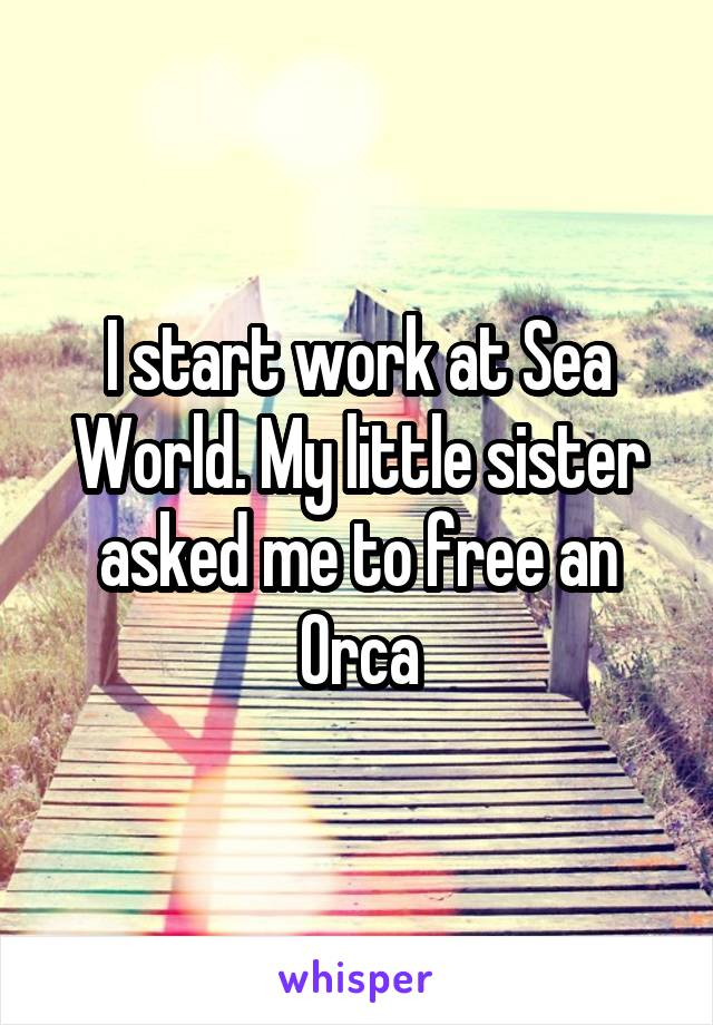 I start work at Sea World. My little sister asked me to free an Orca