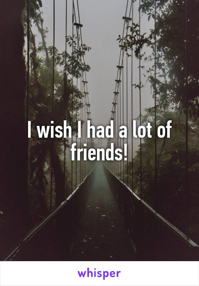 I wish I had a lot of friends!