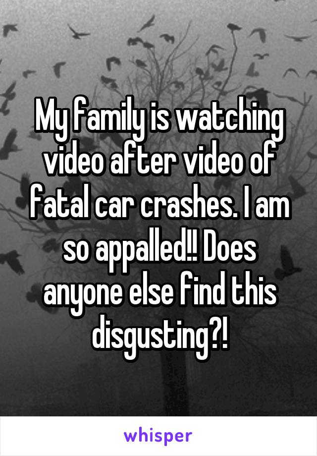 My family is watching video after video of fatal car crashes. I am so appalled!! Does anyone else find this disgusting?!