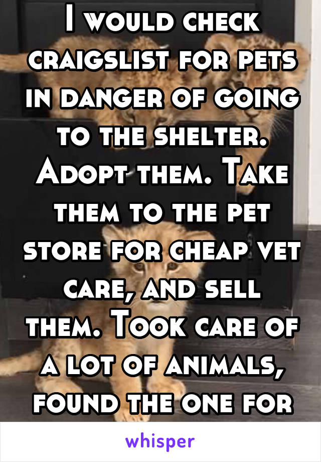 I would check craigslist for pets in danger of going to the shelter. Adopt them. Take them to the pet store for cheap vet care, and sell them. Took care of a lot of animals, found the one for me