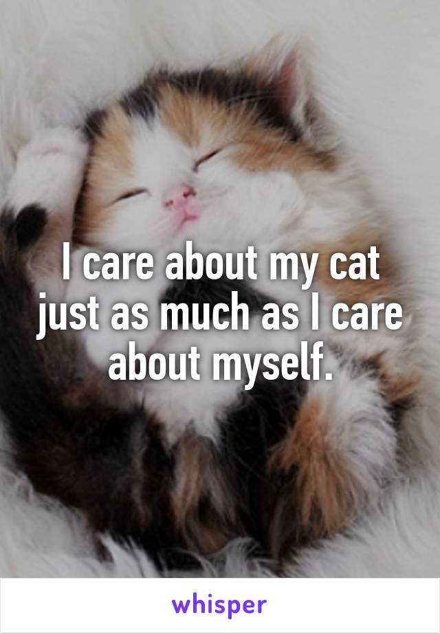 I care about my cat just as much as I care about myself.