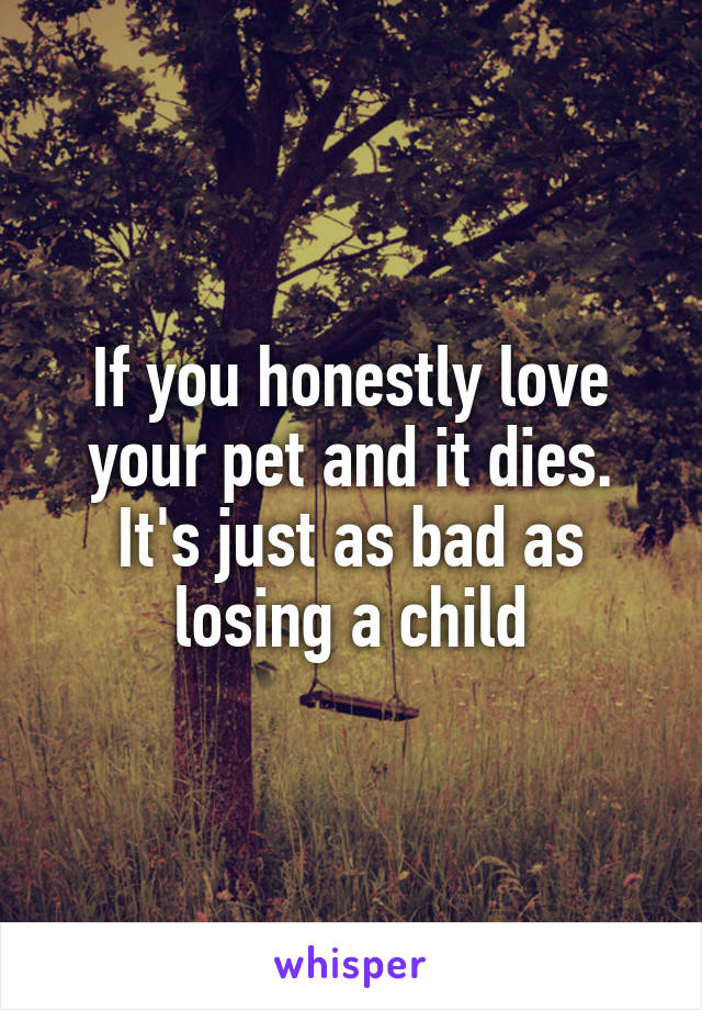 If you honestly love your pet and it dies. It's just as bad as losing a child