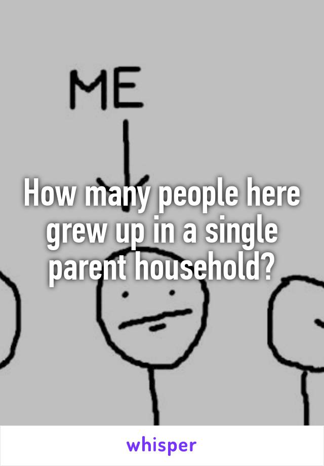 How many people here grew up in a single parent household?