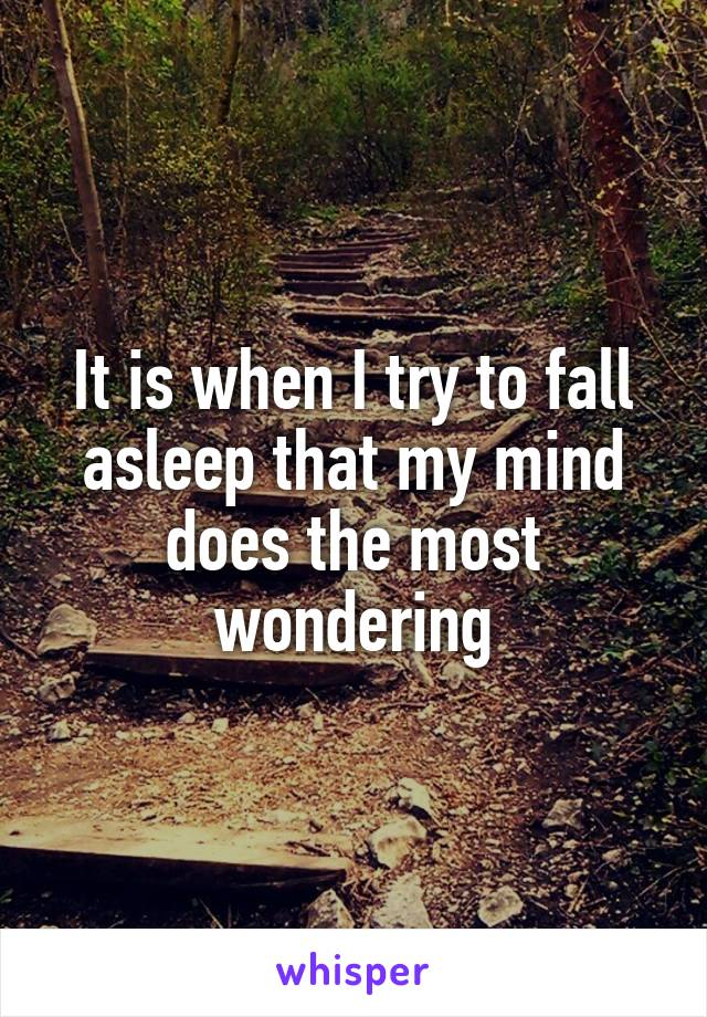 It is when I try to fall asleep that my mind does the most wondering