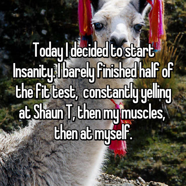 Today I decided to start Insanity. I barely finished half of the fit test,  constantly yelling at Shaun T, then my muscles,  then at myself.