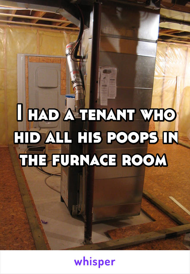 I had a tenant who hid all his poops in the furnace room