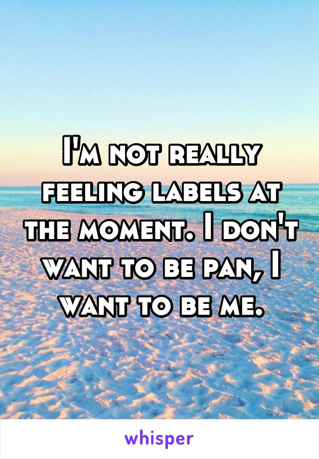 I'm not really feeling labels at the moment. I don't want to be pan, I want to be me.