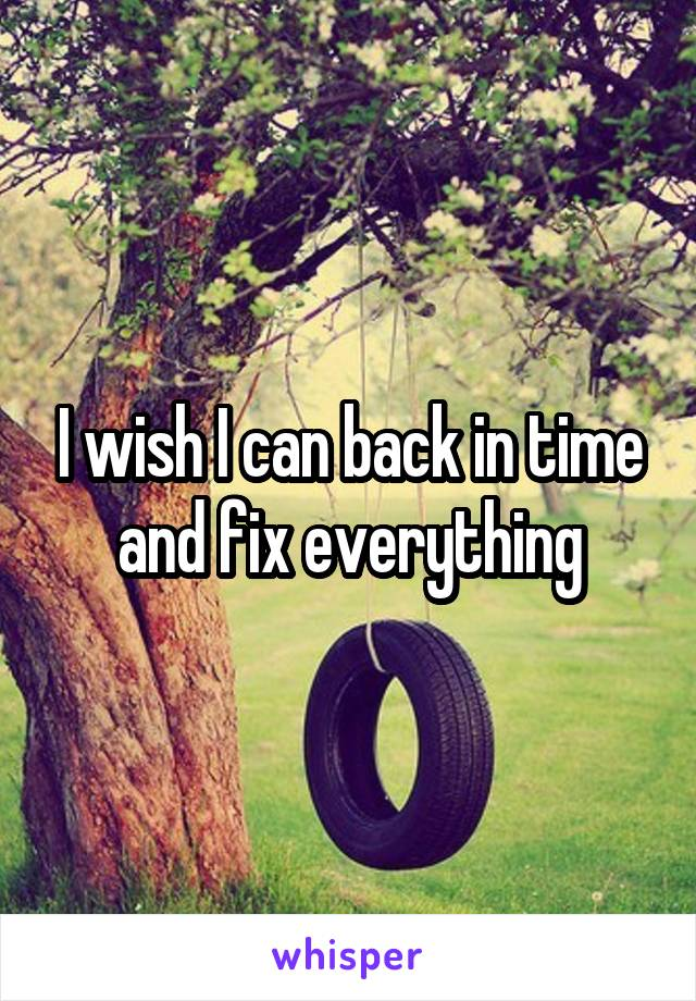 I wish I can back in time and fix everything