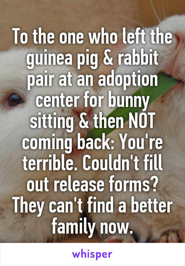 To the one who left the guinea pig & rabbit pair at an adoption center for bunny sitting & then NOT coming back: You're terrible. Couldn't fill out release forms? They can't find a better family now.