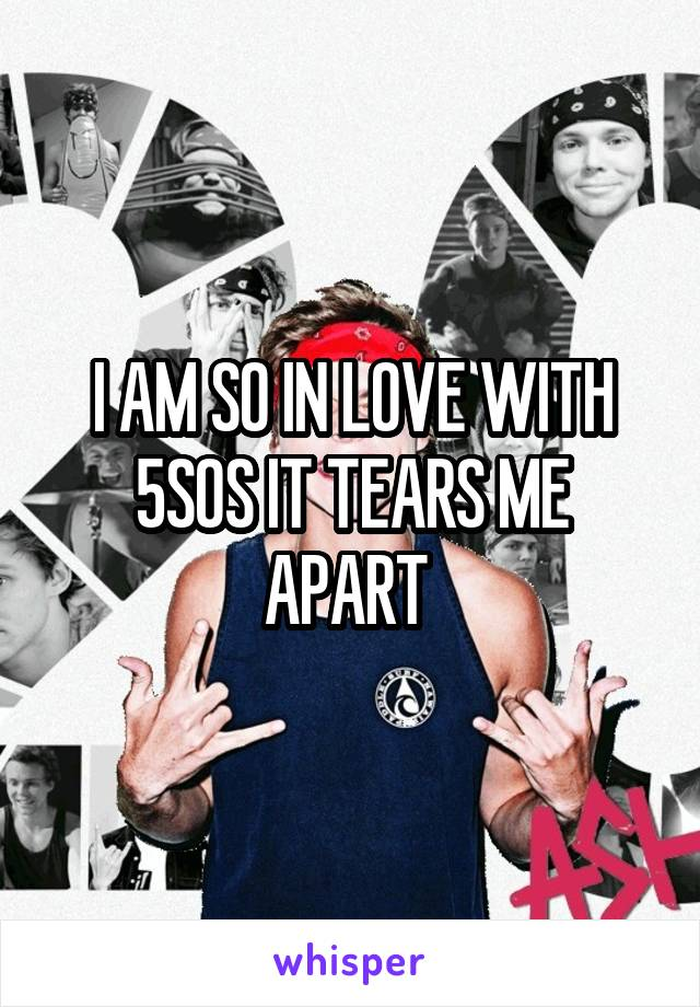 I AM SO IN LOVE WITH 5SOS IT TEARS ME APART