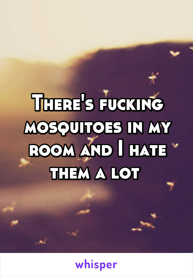 There's fucking mosquitoes in my room and I hate them a lot