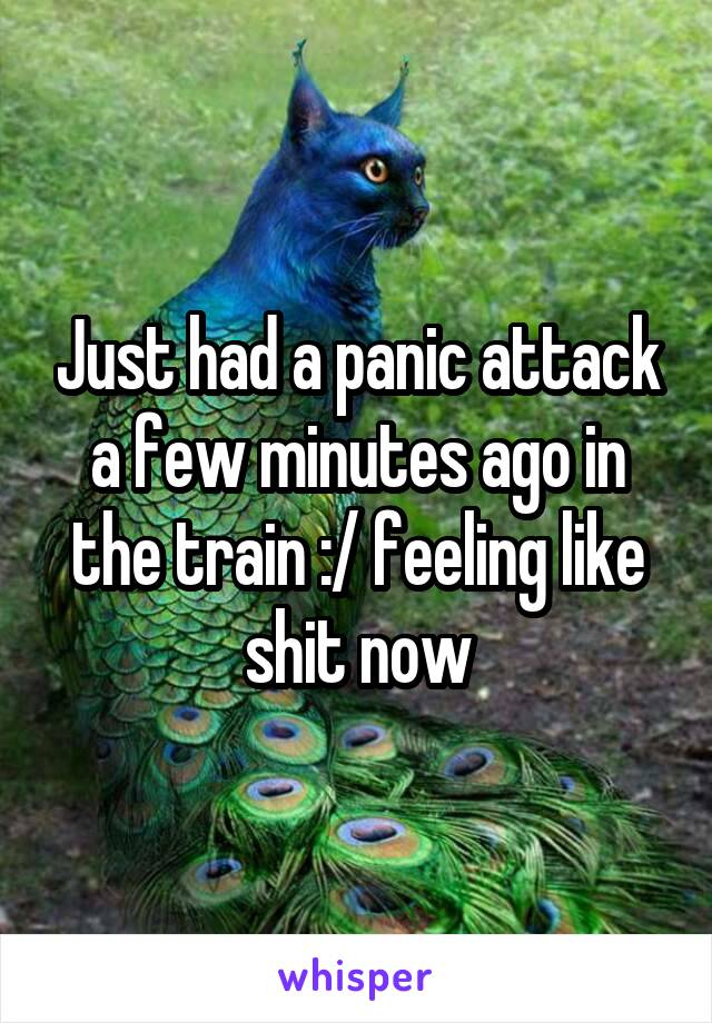 Just had a panic attack a few minutes ago in the train :/ feeling like shit now