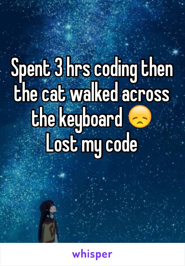 Spent 3 hrs coding then the cat walked across the keyboard 😞 Lost my code