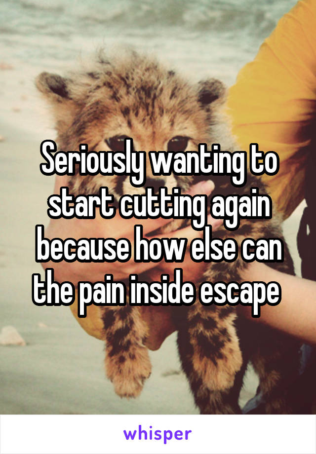 Seriously wanting to start cutting again because how else can the pain inside escape