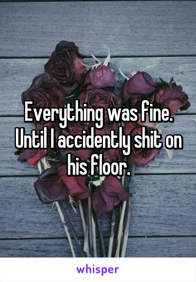 Everything was fine. Until I accidently shit on his floor.