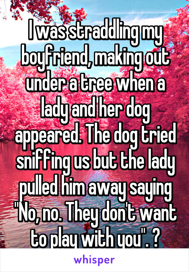 """I was straddling my boyfriend, making out under a tree when a lady and her dog appeared. The dog tried sniffing us but the lady pulled him away saying """"No, no. They don't want to play with you"""". 😶"""