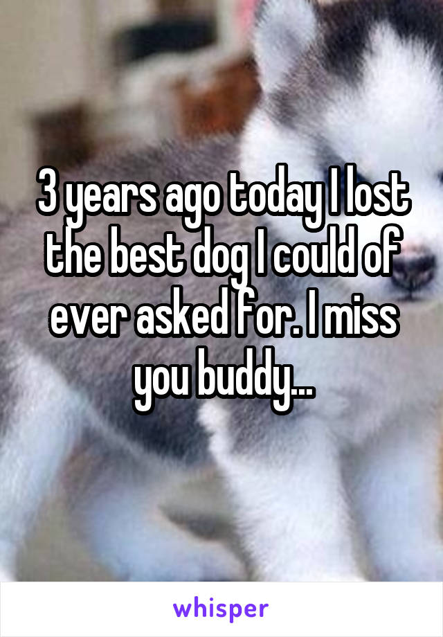 3 years ago today I lost the best dog I could of ever asked for. I miss you buddy...