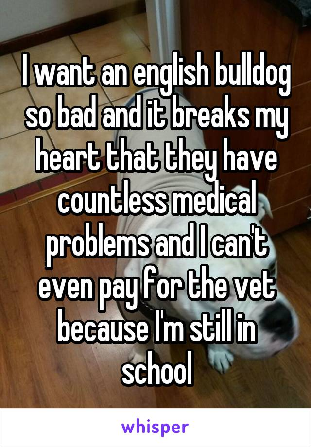 I want an english bulldog so bad and it breaks my heart that they have countless medical problems and I can't even pay for the vet because I'm still in school