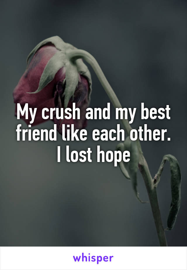 My crush and my best friend like each other. I lost hope