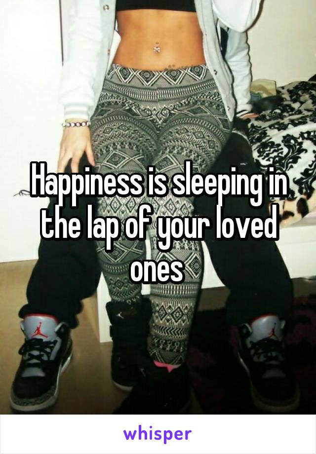Happiness is sleeping in the lap of your loved ones