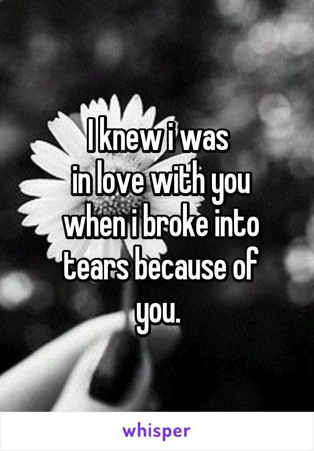 I knew i was  in love with you  when i broke into  tears because of  you.