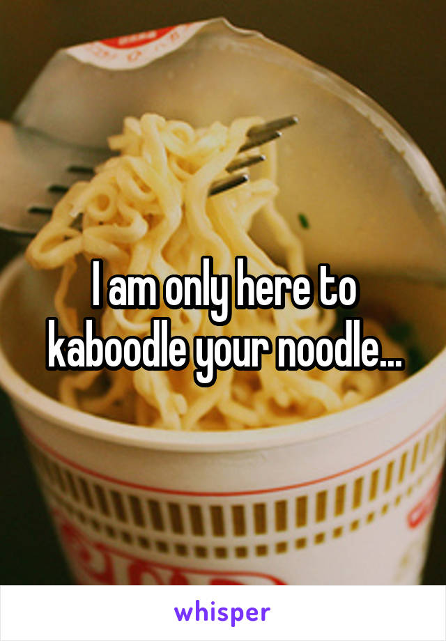 I am only here to kaboodle your noodle...