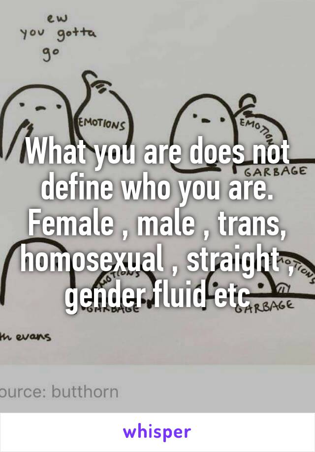 What you are does not define who you are. Female , male , trans, homosexual , straight , gender fluid etc