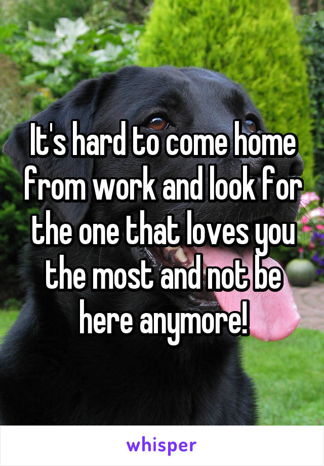 It's hard to come home from work and look for the one that loves you the most and not be here anymore!