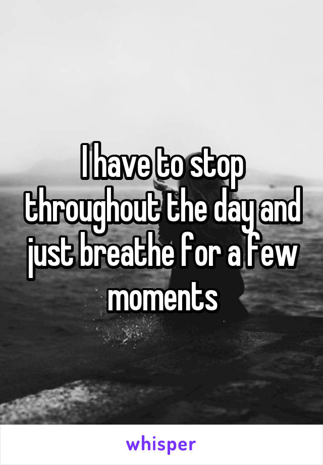 I have to stop throughout the day and just breathe for a few moments
