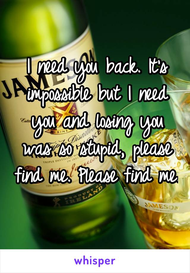 I need you back. It's impossible but I need you and losing you was so stupid, please find me. Please find me.