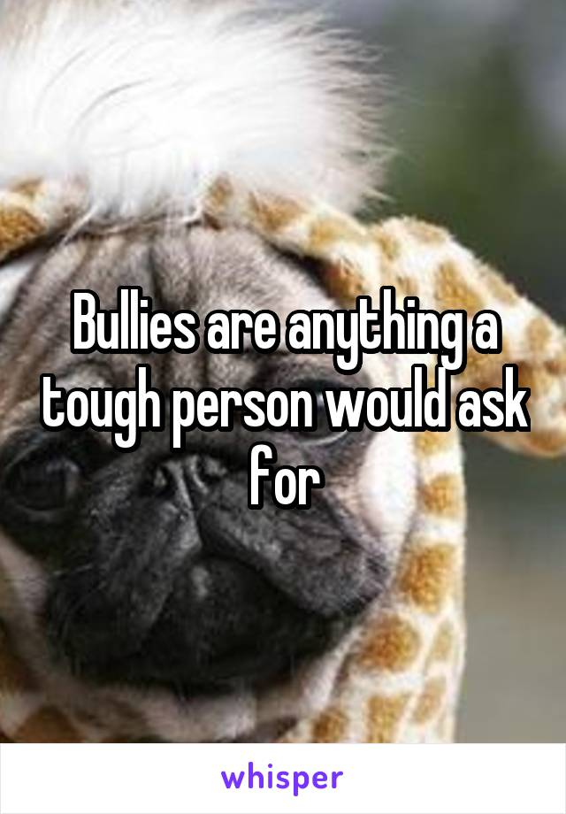 Bullies are anything a tough person would ask for