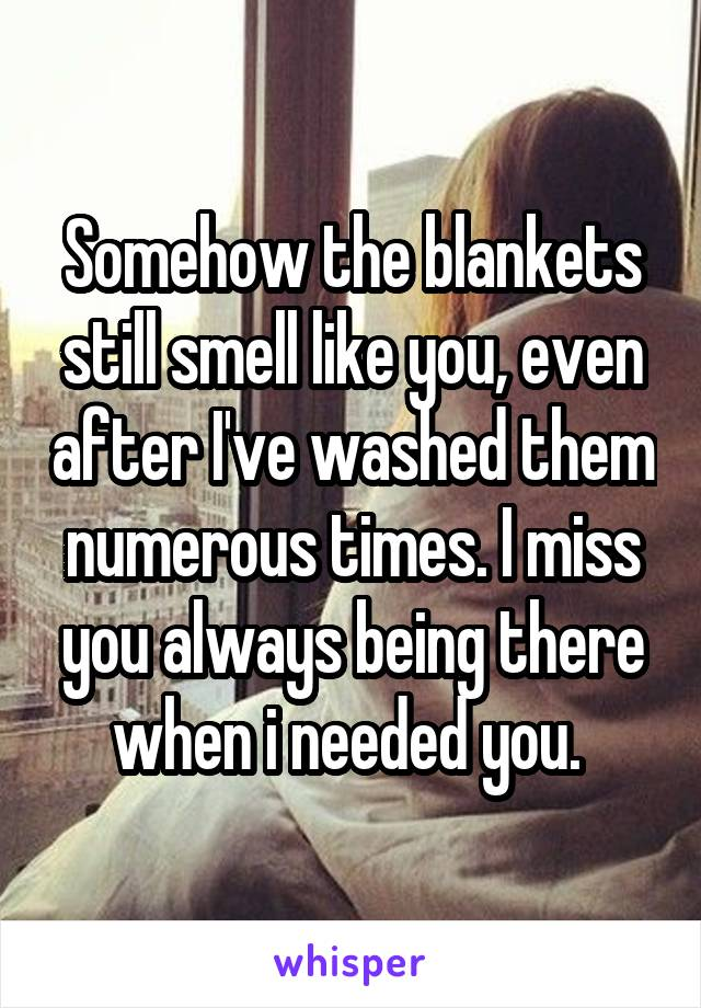 Somehow the blankets still smell like you, even after I've washed them numerous times. I miss you always being there when i needed you.