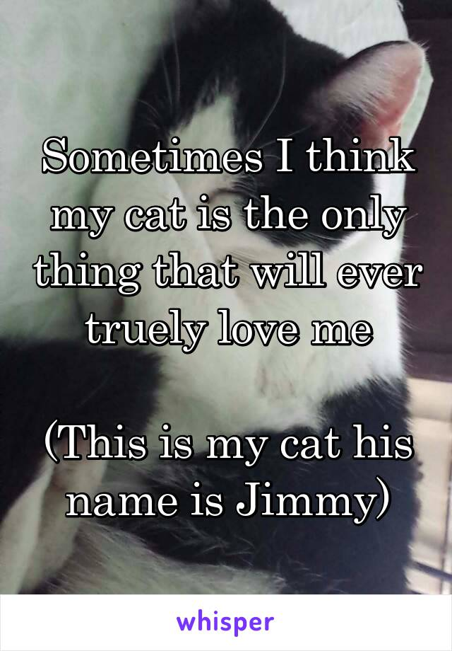 Sometimes I think my cat is the only thing that will ever truely love me  (This is my cat his name is Jimmy)