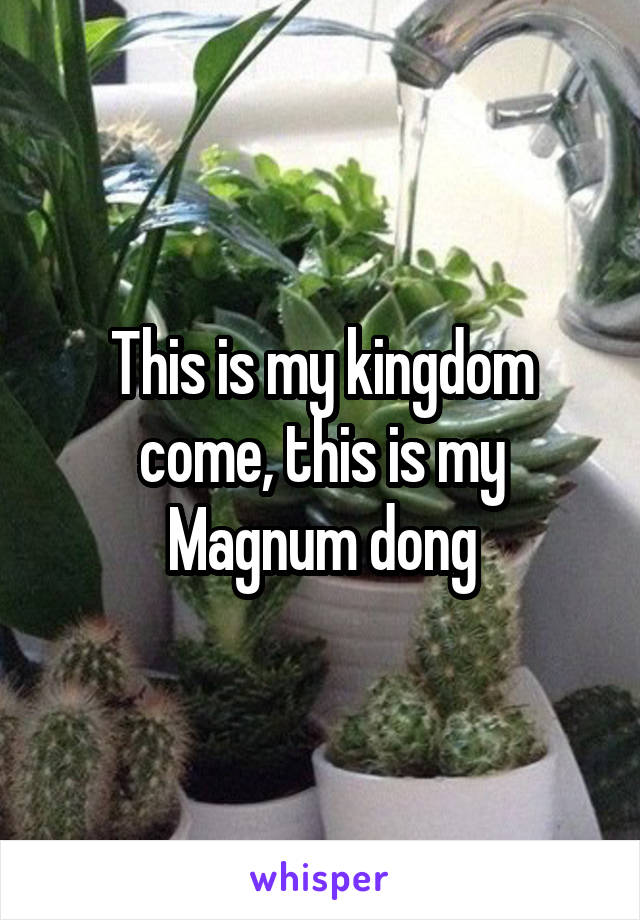This is my kingdom come, this is my Magnum dong