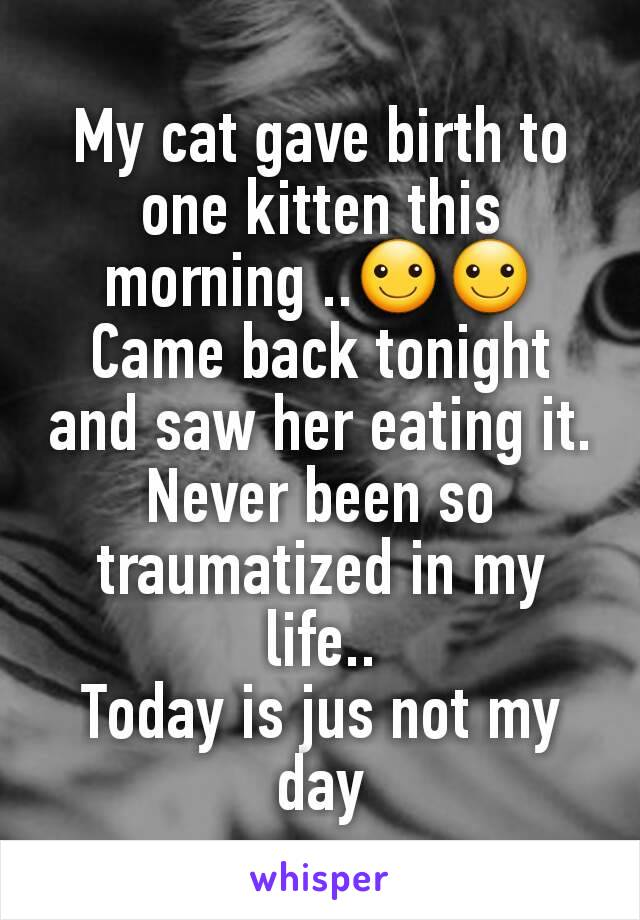 My cat gave birth to one kitten this morning ..☺☺ Came back tonight and saw her eating it. Never been so traumatized in my life.. Today is jus not my day
