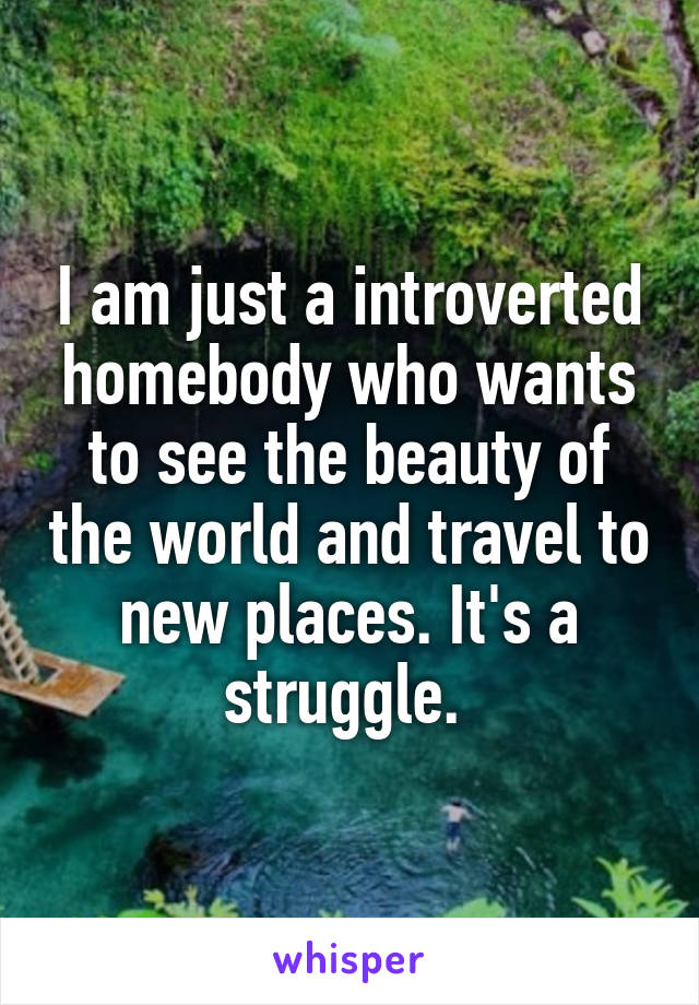 I am just a introverted homebody who wants to see the beauty of the world and travel to new places. It's a struggle.