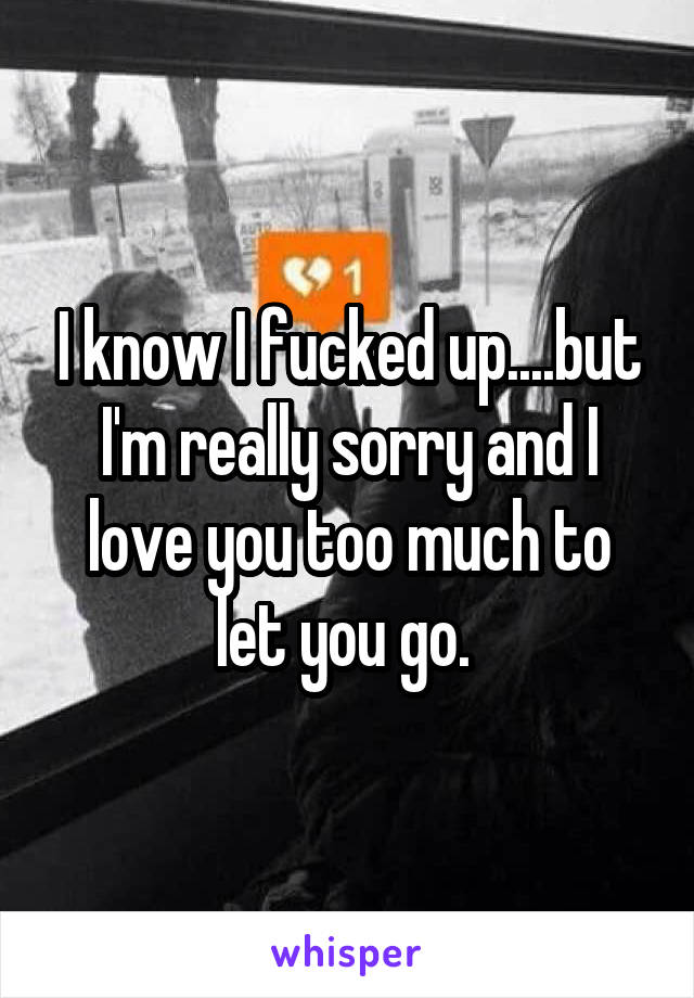 I know I fucked up....but I'm really sorry and I love you too much to let you go.